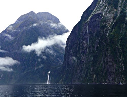 20 Photos That Will Inspire You to Visit Milford Sound